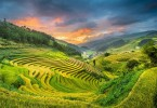 Vietnam-Travel-Sapa-Valley