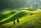 vietnam-visa-for-hongkong-sapa